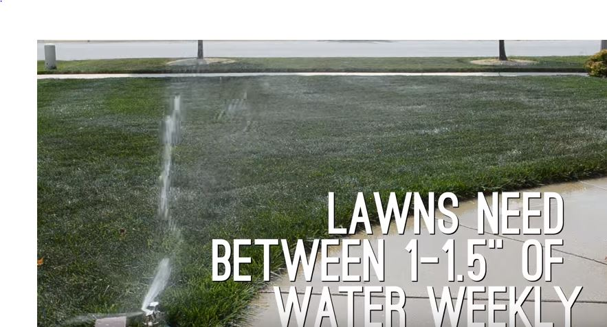 How Often Should I Water My Lawn Elkhart Irrigation